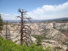 West Rim Trail - Zion Stock Images