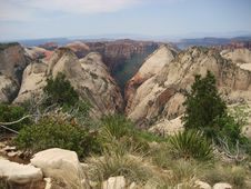 Free Wildcat Canyon - Zion Stock Photography - 3464572