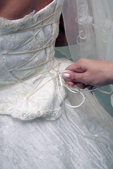 Free Clothing Corset Stock Images - 3465194