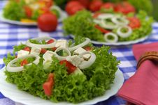 Free Vegetarian Appetizer Royalty Free Stock Photography - 3465477