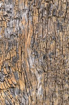 Free Wooden Rough Cracked Royalty Free Stock Photo - 34606805