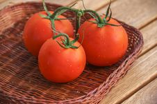 Fresh Red Tomatoes In A Basket Royalty Free Stock Photo
