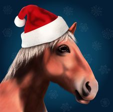 Horse With Santa Claus Hat Stock Images