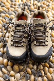 Green Army Outdoor Hiking Shoes Stock Photo