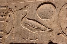 Free Egyptian Hieroglyph Bird Royalty Free Stock Photography - 34638237