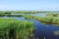 Free Lake Pape, Coastal Lagoon Lake Royalty Free Stock Image - 34653436