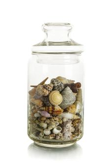 Sea Shells In Jar Royalty Free Stock Photos