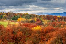 Autumn Hillside With Pine And Colorful Foliage Aspen Trees Near Royalty Free Stock Photos