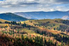 Coniferous And Yellowed Trees In Valley On A Mountain Hillside W Stock Image