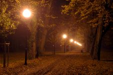 Free Park At Night. Stock Photography - 34656732