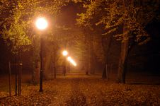 Free Park At Night. Stock Image - 34656781