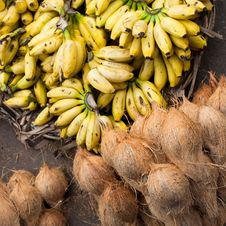 Free Fresh Coconuts And Bananas At Market Place Stock Images - 34657004