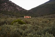 Free Remote Mountain House Sourrounded By Olive Trees Royalty Free Stock Photos - 34659608