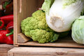 Free Cabbage And Cauliflower Royalty Free Stock Photo - 34660835
