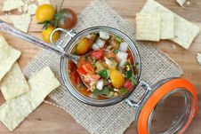 Free Fresh Salsa & Chips Royalty Free Stock Photo - 34660315
