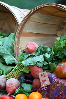 Free Turnips And Tomatoes Stock Photography - 34660702
