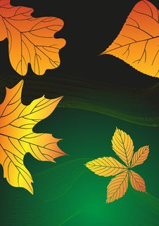 Free Abstract Autumn Background. Royalty Free Stock Images - 34666569