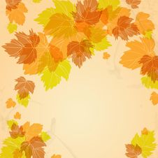 Free Autumn Background Stock Photo - 34671900