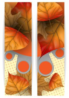 Free Autumn Sale. Stock Image - 34672161
