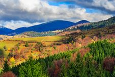 Free Autumn Hillside With Red And Yellow Forest Royalty Free Stock Image - 34678916