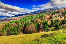 Free Pine Trees Near Valley In Mountains And Autumn Forest On Hillsid Stock Photos - 34678943