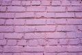 Free Pink Brick Wall Royalty Free Stock Photography - 34682847