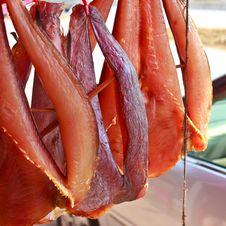 Free Giant Catfish 4 Royalty Free Stock Photo - 34680705