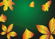 Free Abstract Autumn Background. Stock Photography - 34684572