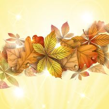 Free Autumn Background With Leaves. Royalty Free Stock Images - 34697539