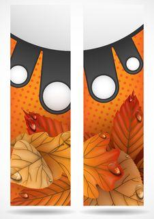 Free Autumn Sale. Royalty Free Stock Photo - 34697655