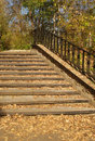 Free Ladder In The Autumn Stock Photos - 3477273