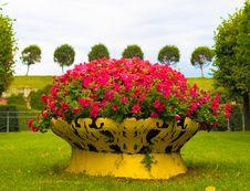 Free Flowers! Stock Image - 3471341