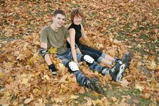 Free Roller Couple Sit On Leaves Royalty Free Stock Photography - 3473817