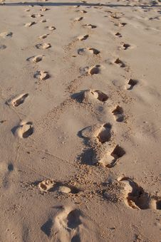 Free Footsteps On Sand Beach Royalty Free Stock Image - 3473896