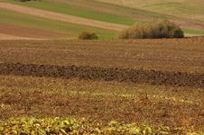Free Agricultural Fields Royalty Free Stock Images - 3474149