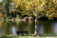 Free Lakeside In Early Autumn Royalty Free Stock Image - 3476226