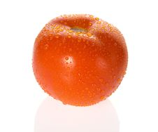 Free Wet Ripe Tomato Royalty Free Stock Photo - 3477265
