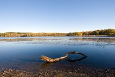 Free Fall Pond Royalty Free Stock Photography - 3477377