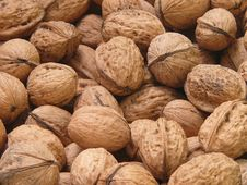 Free Walnuts Royalty Free Stock Photography - 3479777