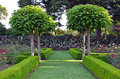 Free Summer Garden Park Stock Photo - 34702620