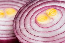 Free Sliced Red Onions Royalty Free Stock Images - 34706369