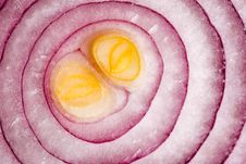 Free Sliced Red Onions Stock Photo - 34706410