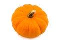 Free Orange Halloween Pumpkin Stock Image - 34716521