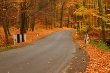 Free The Road Through The Autumnal Forest. Royalty Free Stock Photography - 34718477