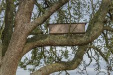 Free Bird House On The Tree Stock Images - 34741884