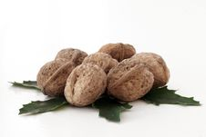 Free Walnut Stock Photo - 34742170