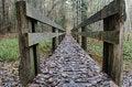 Free Bridge In Autumn Forest Stock Image - 34750191