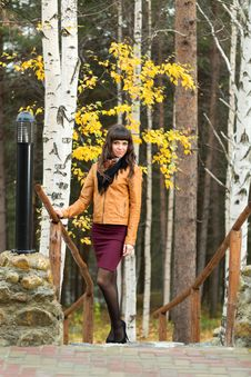 Charming Girl In The Autumn Forest Stock Images