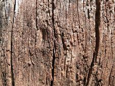 Free Age-roughened Wood Surface Royalty Free Stock Photo - 34756465