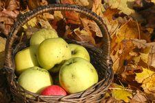 Free Apples Royalty Free Stock Photos - 34758258